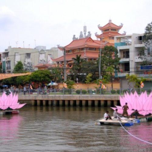7 đóa sen hồng đã xuất hiện trên kênh Nhiêu Lộc
