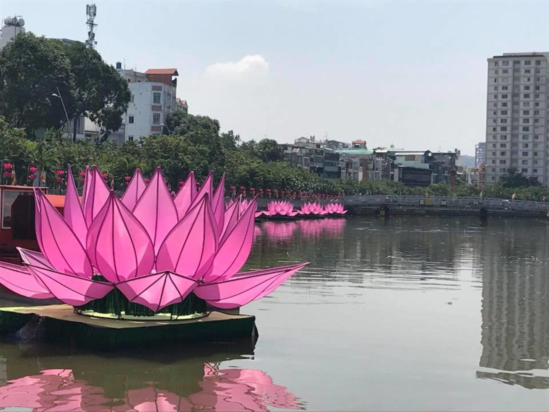 Lung linh sen hồng mùa Phật Đản